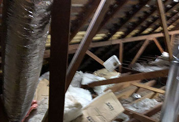 Attic Insulation Removal Project | Attic Cleaning Berkeley, CA